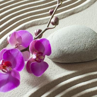 fotomural-piedra-zen